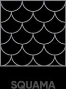 Textura squama